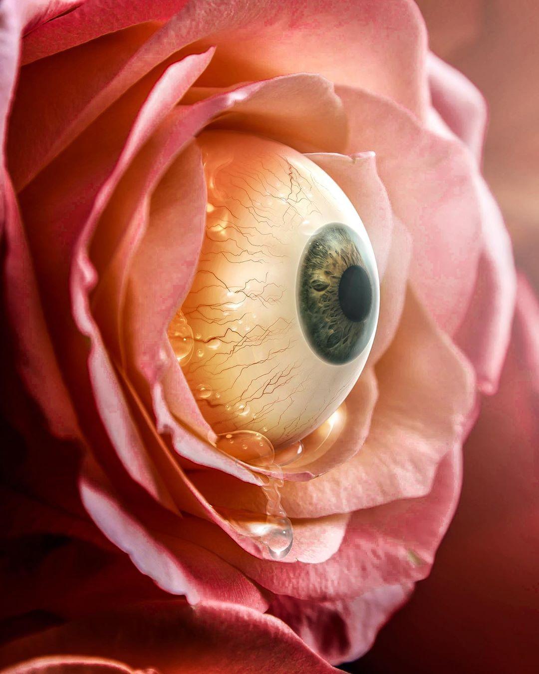 Crying Flower by Shaun Ryken