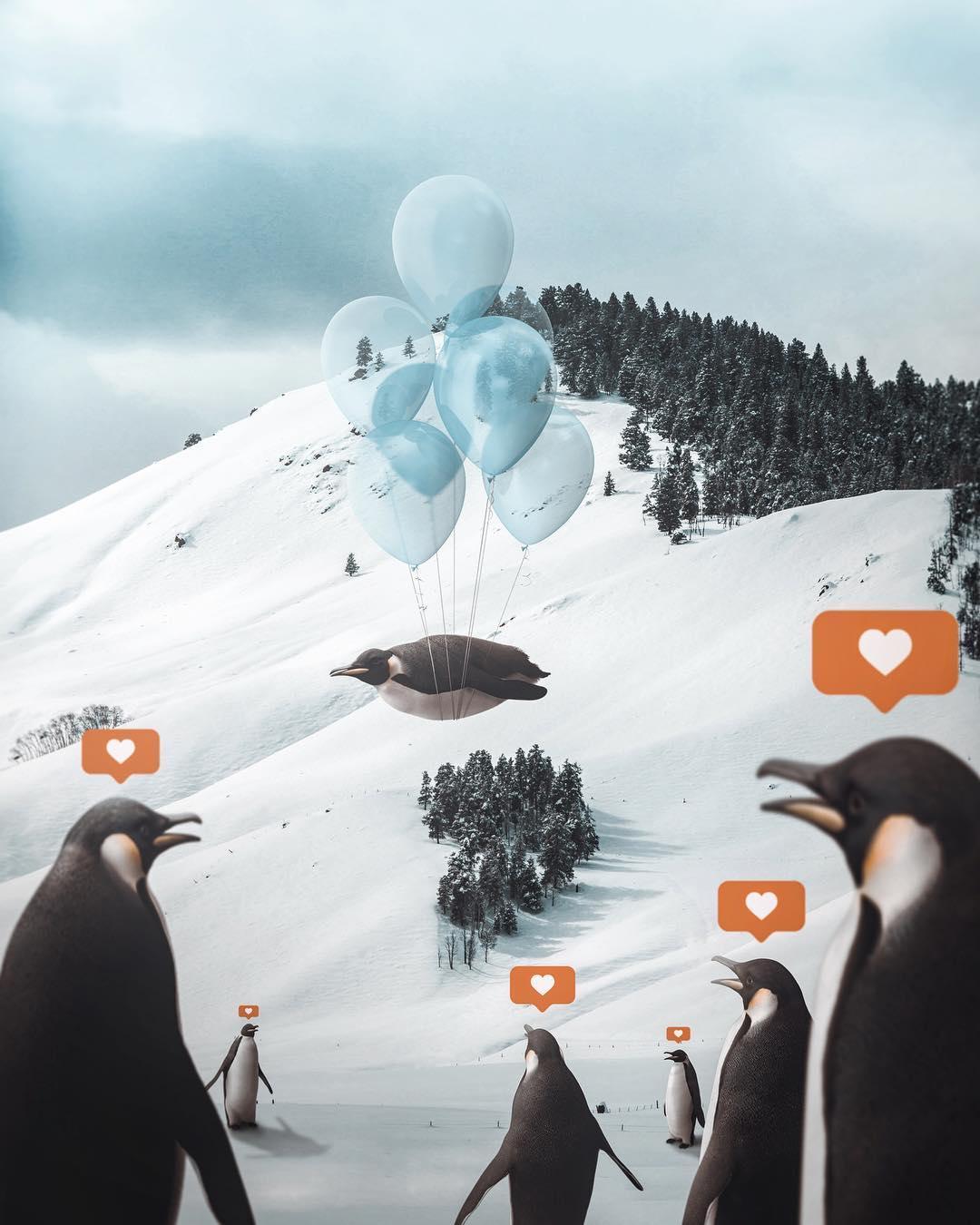 Penguin by Shaun Ryken